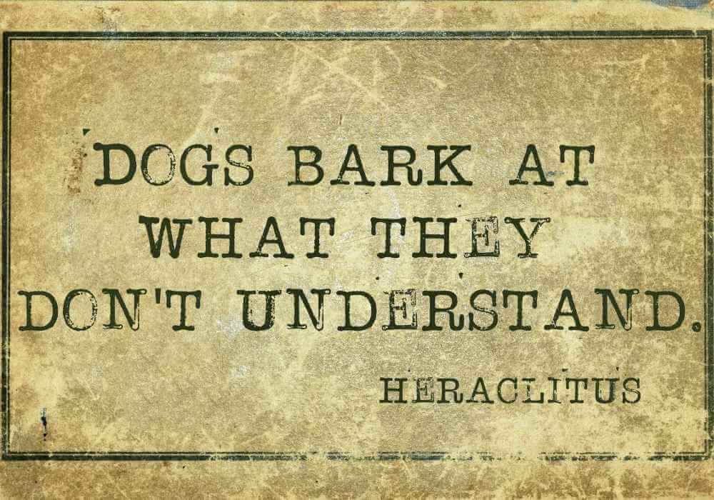 a quote on why dogs bark